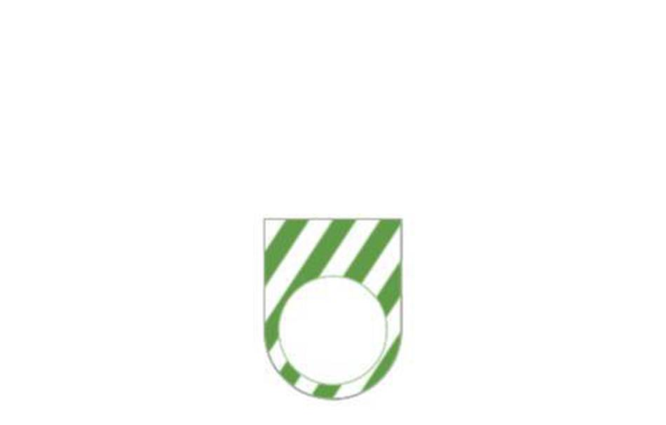 Acrylic glass 3mm green                                                Gadgets Fun Jewelry Rings Gadgets Fun Lasercut