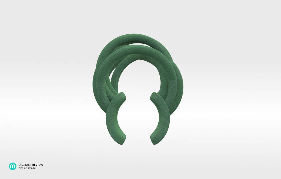 Plastic matte green                                                Jewelry competition | winning designs Top designs Jewelry Rings 3D printed