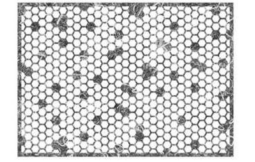 Placemat honeycomb design - Felt grey