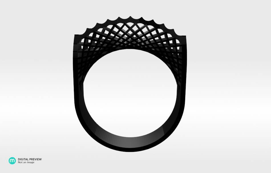 Resin black                                                Jewelry Rings 3D printed